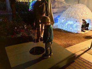 San Antonio Zoo Lights 2016