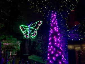 San Antonio Zoo Lights 2016