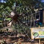 San Antonio Zoo Bug Mania